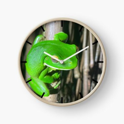 green tree frog clock